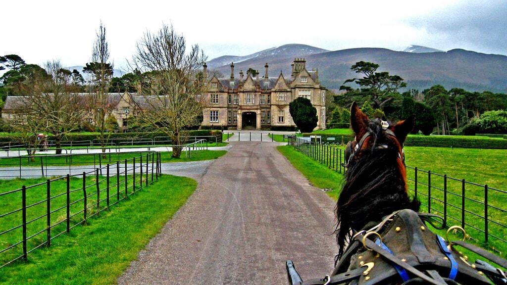 Ride around Killarney National Park Ireland