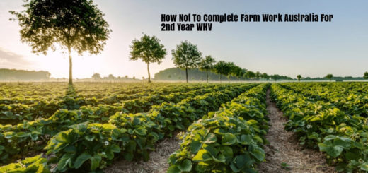 How To Do Farm Work Australia