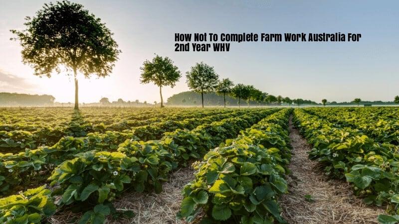How To Do Farm Work Australia