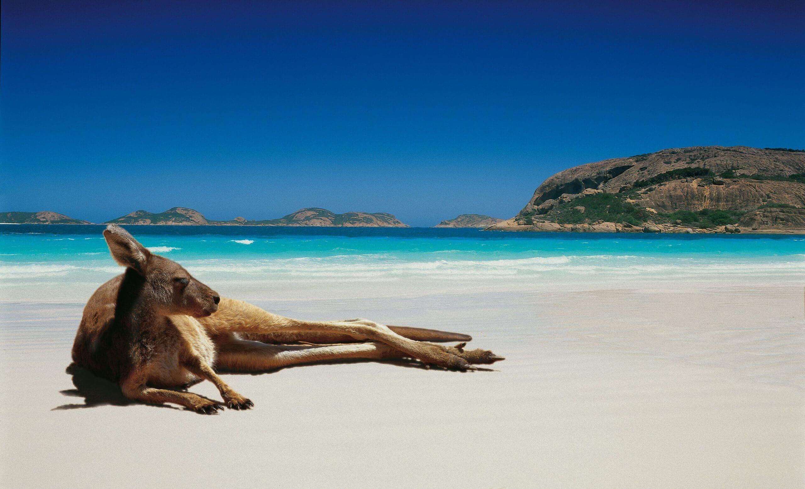 Reasons to never visit Australia.