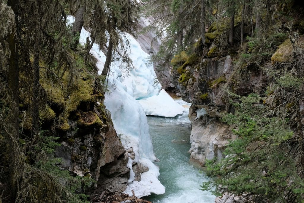 The Johnston Canyon trail snow in May