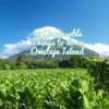 10 Unmissable Things To Do In Ometepe Island Nicaragua 2020