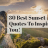30 Best Handpicked Sunset Quotes That Will Inspire You In 2020