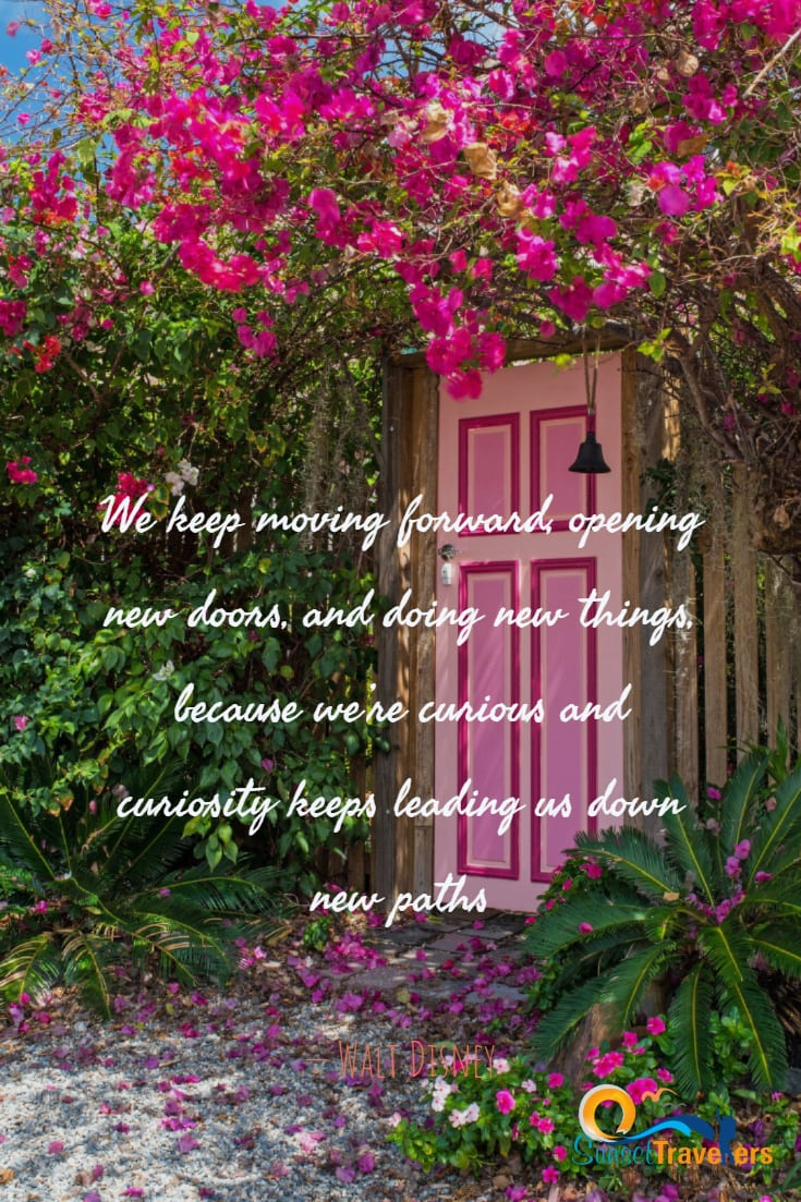 We keep moving forward, opening new doors, and doing new things, because we're curious and curiosity keeps leading us down new paths' - Walt Disney