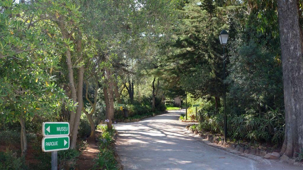 Peacock park -Have a stroll around Parque Marechal Carmona