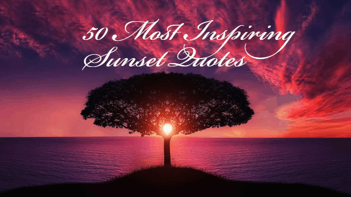 best handpicked sunset quotes that will inspire you in