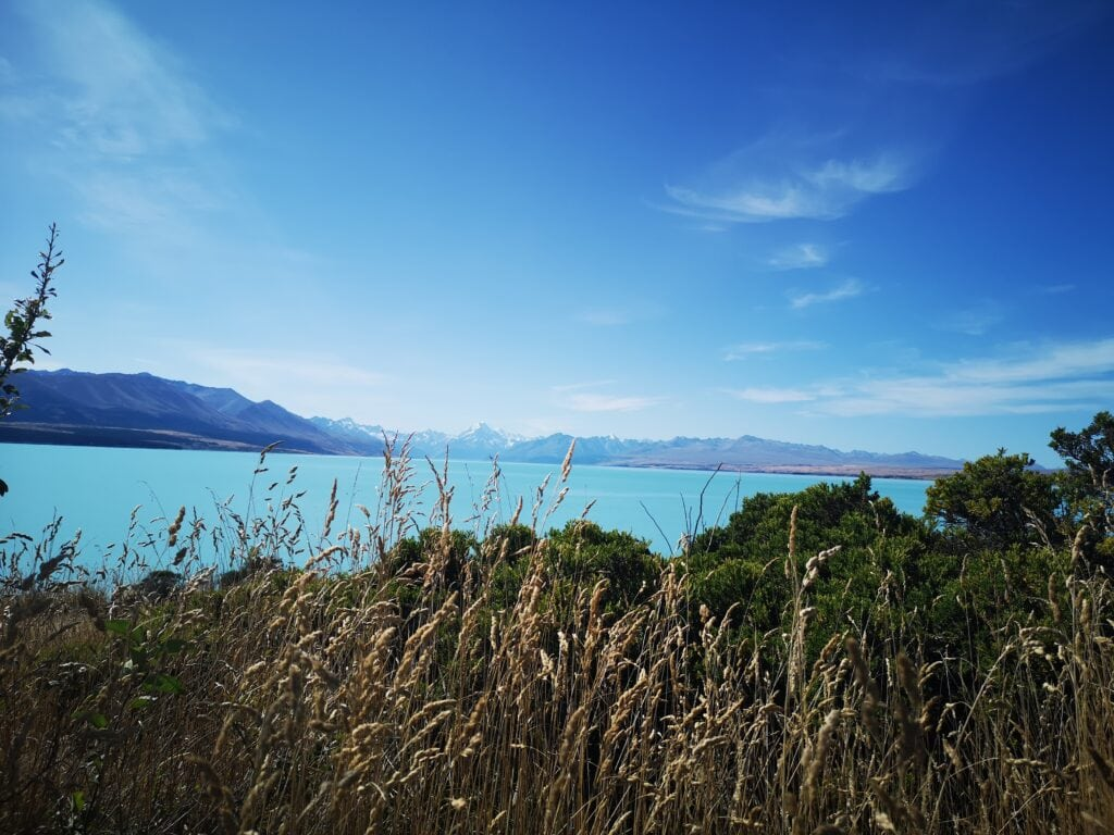 Lake Pukaki with a distant view of Mt Cook