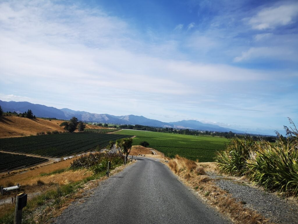 Marlborough wine region on our South Island of NZ road trip